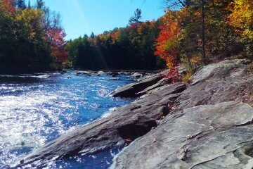 Autumn at Oxtongue River - captured by Artful Productions - the Slow TV / Slow Film store