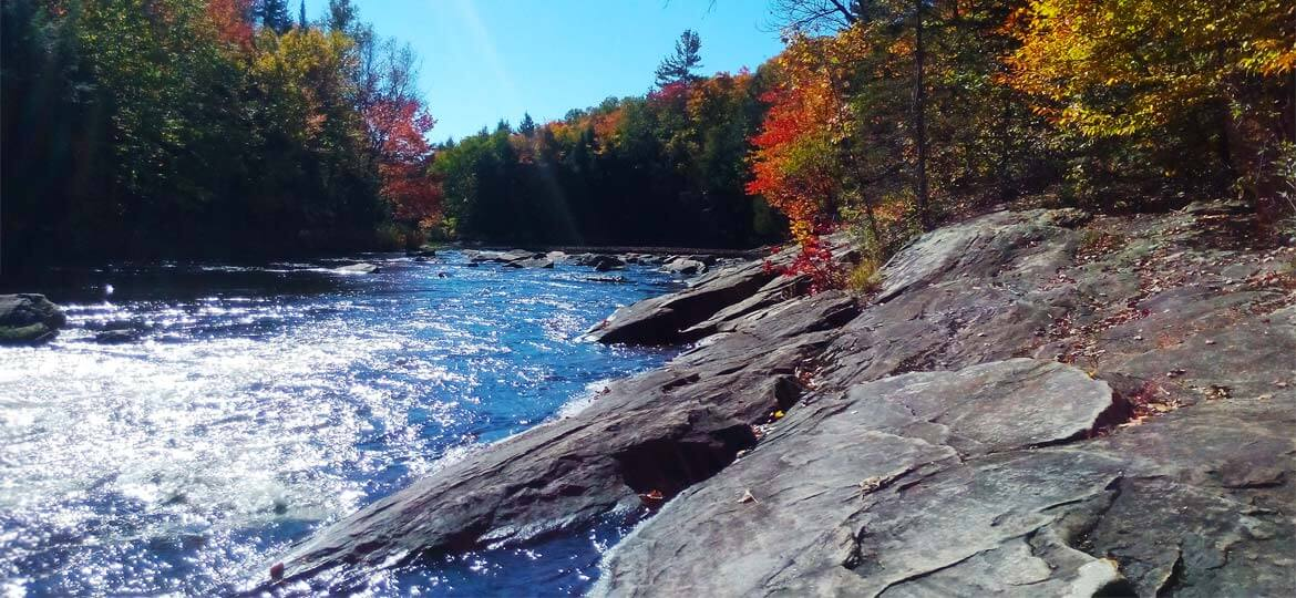 Muskoka Autumn River