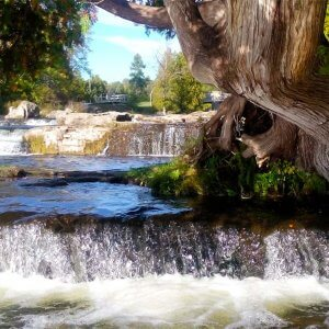 Sauble Falls - a classic tiered waterfall captured by Artful Productions - Slow Film / Slow TV Central